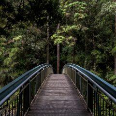 Új Ipoly-híd épül