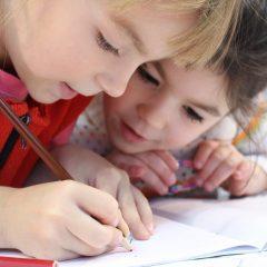 A KKV szektor és az oktatás